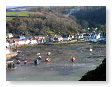 Fishguard Harbour at low tide FG2